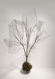 nick-bowers-tree-installation-03