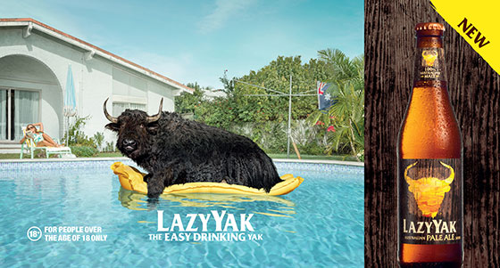 lazy-yak-sean-izzard-01